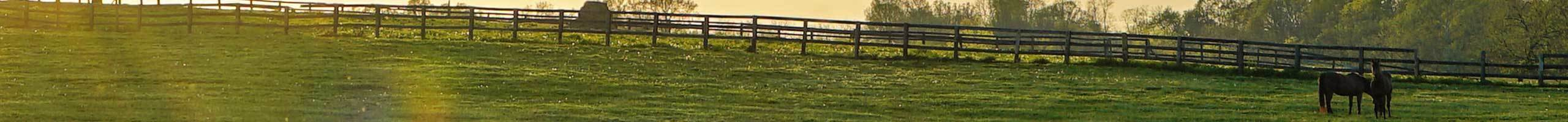 farm ranch fences